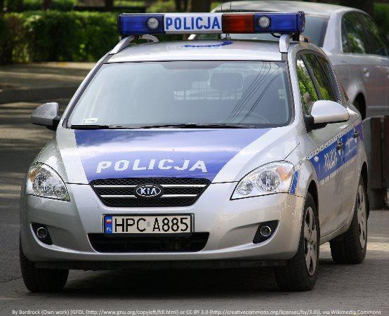 Policja Częstochowa: Policyjni jeźdźcy i przewodnik psa na pikniku w Hucie Starej